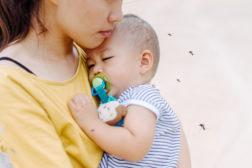 Økende forekomst av denguefeber i Vietnam, Malaysia og Mellom- Amerika.
